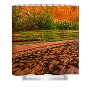 Colorful Streambed - Coyote Gulch - Utah Shower Curtain by Gary Whitton