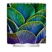 Colors of the Cabbage Patch Shower Curtain by Christi Kraft