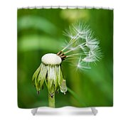 Commander In Chief - Featured 3 Shower Curtain by Alexander Senin