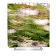 Coneflowers In The Breeze Shower Curtain by Paul W Faust -  Impressions of Light