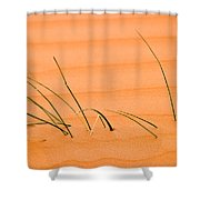 Coral Pink Sands 1 Shower Curtain by Adam Romanowicz