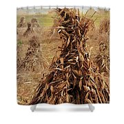 Corn Stalk Bales Shower Curtain by Marcia Colelli