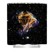 Cosmic Heart Shower Curtain by The  Vault - Jennifer Rondinelli Reilly