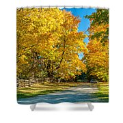 Country Lane Shower Curtain by Steve Harrington