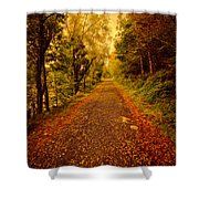 Country Lane V2 Shower Curtain by Adrian Evans