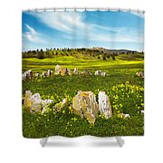 Countryside With Stones Shower Curtain by Carlos Caetano