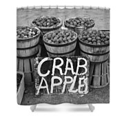 Crab Apples Shower Curtain by Digital Reproductions