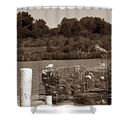 Crabbers Shower Curtain by Skip Willits