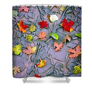 Cracked Mud And Leaves Shower Curtain by Inge Johnsson
