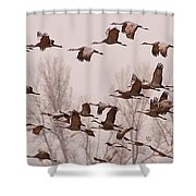 Cranes Across The Sky Shower Curtain by Don Schwartz