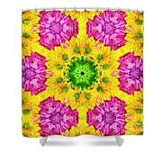 Crazy Daises - Spring Flowers - Bouquet - Gerber Daisy Wanna Be - Kaleidoscope 1 Shower Curtain by Andee Design