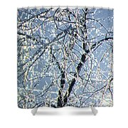 Crystal Beads Shower Curtain by Kathleen Struckle