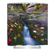 Cut Into Autumn Shower Curtain by Peter Coskun