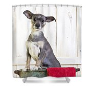 Cute Dog Washtub Shower Curtain by Edward Fielding