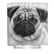 Cute Pug Shower Curtain by Olga Shvartsur