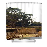 Cypress Trees On 17 Mile Drive Shower Curtain by Barbara Snyder