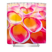 Dahlia Abstract Shower Curtain by Priya Ghose