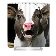 Dairy Cow Shower Curtain by Christina Rollo