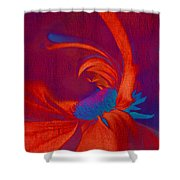 Daisy Fun - a03ct02 Shower Curtain by Variance Collections