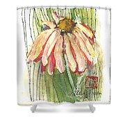 Daisy Girl Shower Curtain by Sherry Harradence