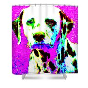 Dalmation Dog 20130125v1 Shower Curtain by Wingsdomain Art and Photography