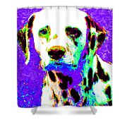 Dalmation Dog 20130125v4 Shower Curtain by Wingsdomain Art and Photography