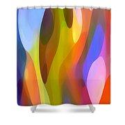 Dappled Light 3 Shower Curtain by Amy Vangsgard