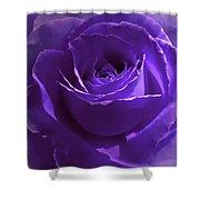 Dark Secrets Purple Rose Shower Curtain by Jennie Marie Schell