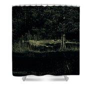Dark Woods Shower Curtain by Alexei Biryukoff