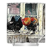 darling its cold outside Shower Curtain by Hilde Widerberg