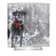 Dashing Through The Snow Shower Curtain by Lori Deiter