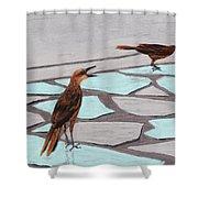 Death Valley Birds Shower Curtain by Anastasiya Malakhova