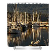 Deep Bay Shower Curtain by Randy Hall