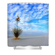 Desert Beauty White Sands New Mexico Shower Curtain by Bob Christopher