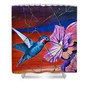 Desert Hummingbird - Study No. 1 Shower Curtain by Steve Bogdanoff