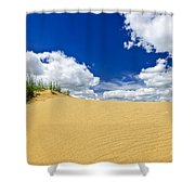Desert Landscape In Manitoba Shower Curtain by Elena Elisseeva