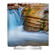 Desert Oasis Shower Curtain by Chad Dutson