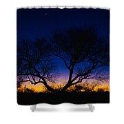 Desert Silhouette Shower Curtain by Chad Dutson