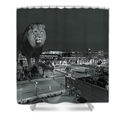 Detroit Lions Shower Curtain by Nicholas  Grunas
