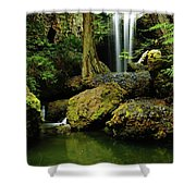 Devil Creek Falls  Shower Curtain by Jeff Swan