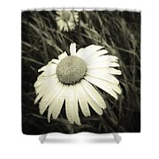 Dew Drops  Shower Curtain by Les Cunliffe
