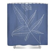 Dictyopteris Barberi Shower Curtain by Aged Pixel