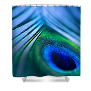 Do You Dream In Colour? Shower Curtain by Jan Bickerton