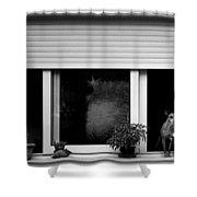 Dog In A Window Shower Curtain by Fabrizio Troiani