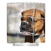 Don't Fence Me In Shower Curtain by Terry Fleckney