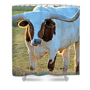 Don't Mess With Me Shower Curtain by Jan Amiss Photography
