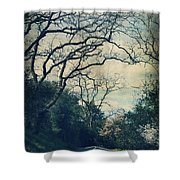 Down That Path Shower Curtain by Laurie Search