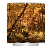 Down The Golden Path Shower Curtain by Donna Kennedy