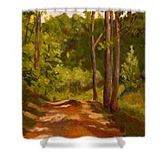 Down The Road Shower Curtain by Janet Felts