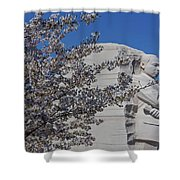 Dr Martin Luther King Jr Memorial Shower Curtain by Susan Candelario